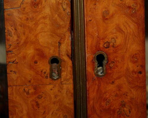 Neoclassical-Burlwood-Bookcase-Cabinet-5